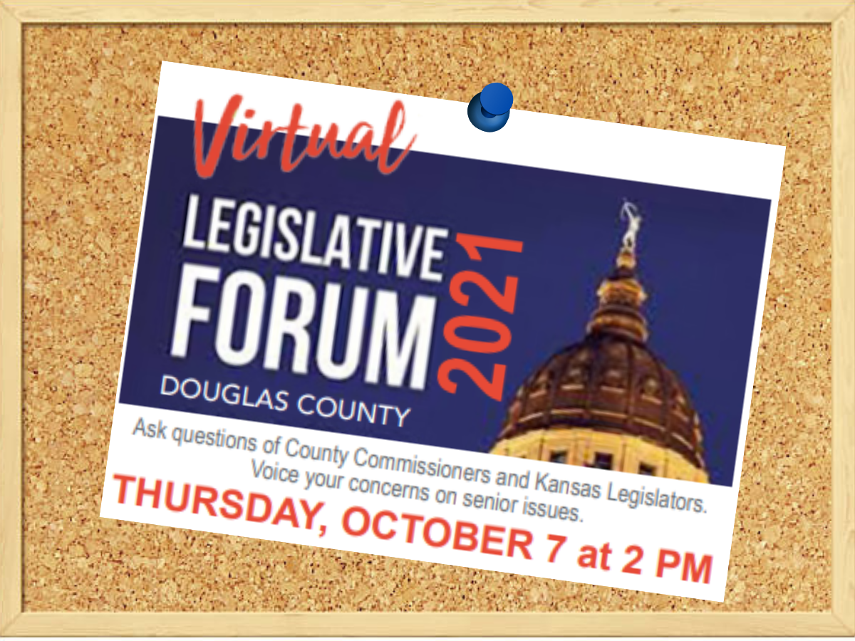 Image depicts the top of  the Capitol Building on a blue background to the right of the words Legislative Forum Douglas County 2021